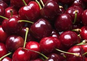 new-zealand-cherry.jpg