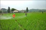杀虫剂、除草剂、杀菌剂、杀螨剂特殊规律